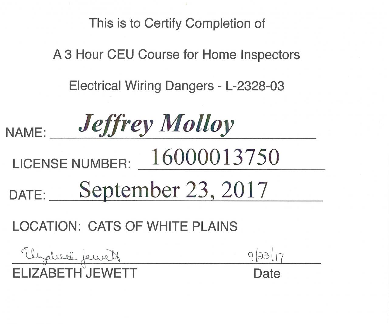 Check mark services llc certificates continued 2017 training 2017 training 1betcityfo Gallery