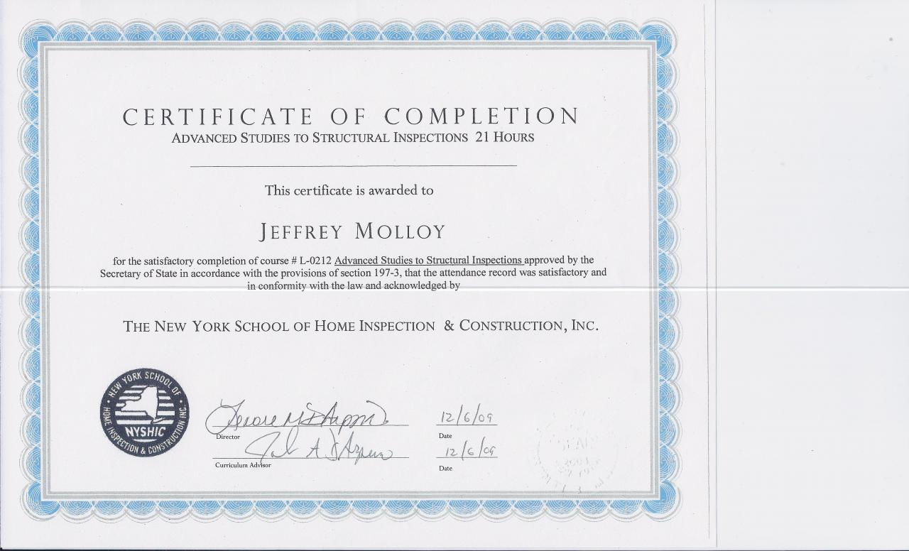 Check Mark Services Llc Certificates Licenses